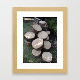 Tree Rings Framed Art Print