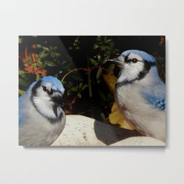 She's watching us Metal Print