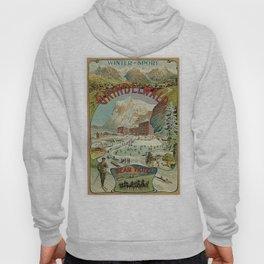 Vintage Grindelwald Swiss winter sport travel advert Hoody