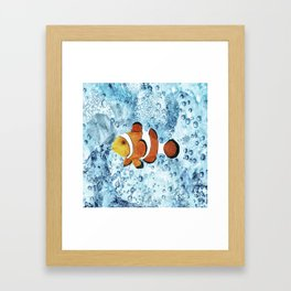 Illustration of Nemo Clown Fish Framed Art Print
