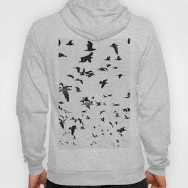 Seagulls Hoody