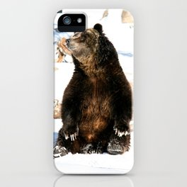Chillin' Bear iPhone Case