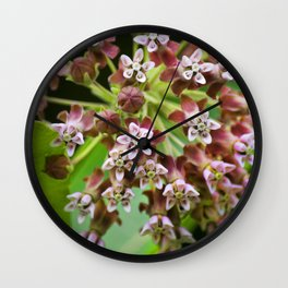 Pink Milkweed Flowers Wall Clock