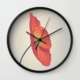 Poppy in Whole Wall Clock
