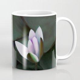 Water lotus in a pond Coffee Mug