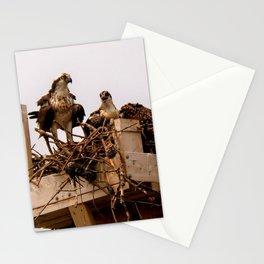 Osprey Family Stationery Cards