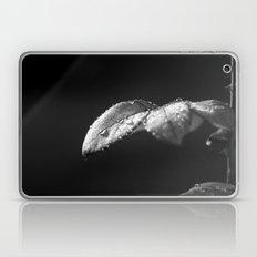 Rose in Black and White Laptop & iPad Skin
