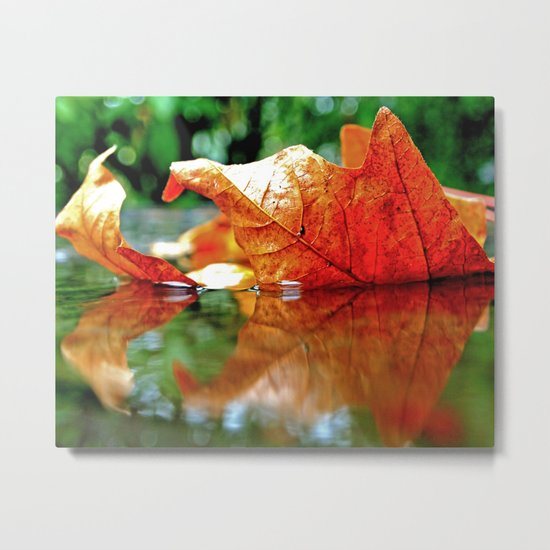 Autumn leaf reflected Metal Print