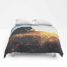 an Arizona sunset ... Comforters