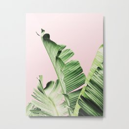 Banana Leaf on pink Metal Print