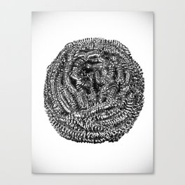 Steel Wire Wood Scrub Canvas Print