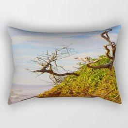 HDR Sandy Cliffs Rectangular Pillow