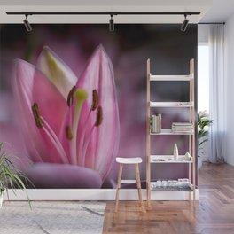 April Tulips Wall Mural