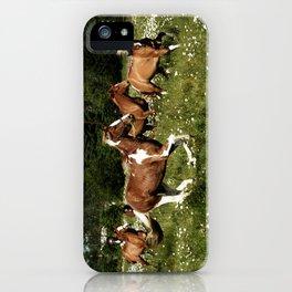 Spring Horse Run iPhone Case