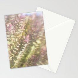 Sunlit Dream Stationery Cards