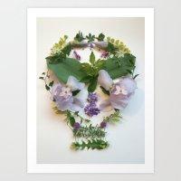 Botanical 4 Art Print