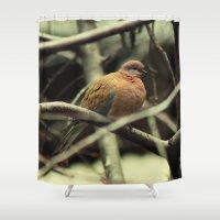 pigeon Shower Curtains featuring Pigeon by Zura