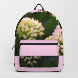 Bumblebee pink Backpack