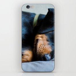 Days of Dog sitting iPhone Skin
