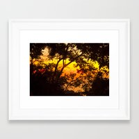 tropical Framed Art Prints featuring tropical by mark ashkenazi