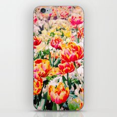 Beauty in Nature! iPhone & iPod Skin