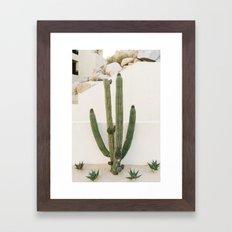 Cabo Cactus X Framed Art Print