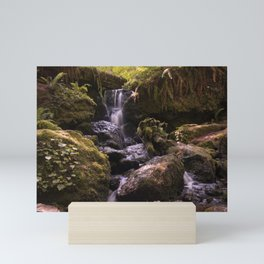 Long exposure of Trillium Falls Mini Art Print
