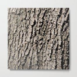 TEXTURES - Valley Oak Tree Bark Metal Print