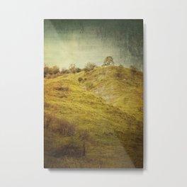 Salt Meadow Mounds Metal Print