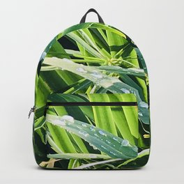 Fresh Morning Dew Glistening on Elegant Grass Blades Backpack