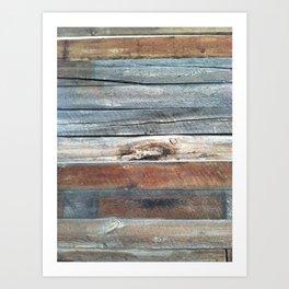 Cold Springs Barnwood Art Print