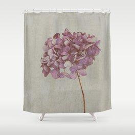 Beautiful Vintage Hydrangea Shower Curtain