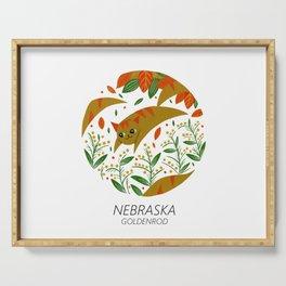 American Cats - Nebraska Serving Tray