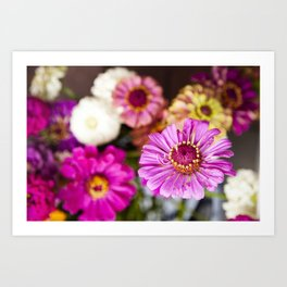 Floral II  /  The Fresh Flower Collection Art Print