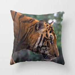 Bengal Tiger Hunt Throw Pillow