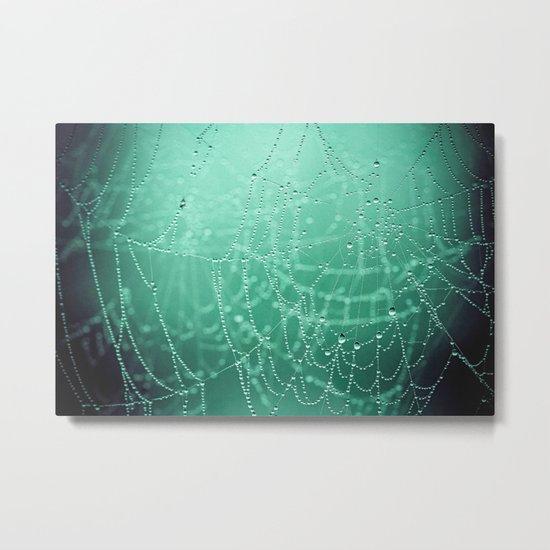 two webs Metal Print