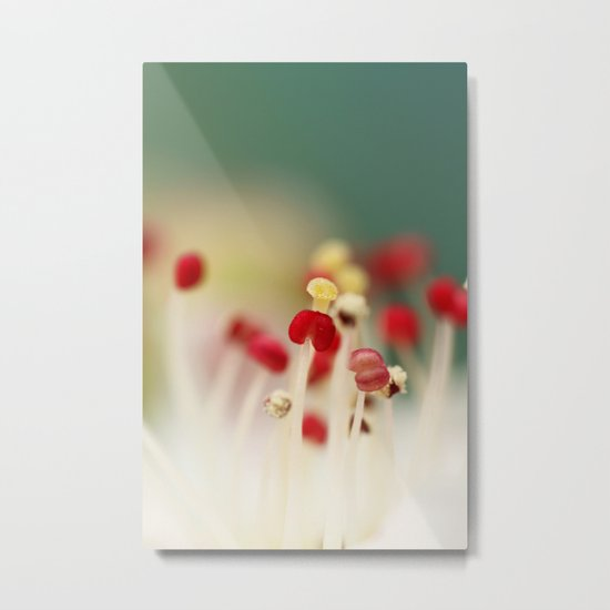 Flower Candy Metal Print
