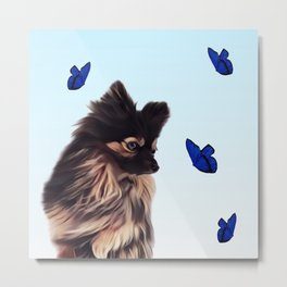 The Pomeranian and the Butterflies Metal Print