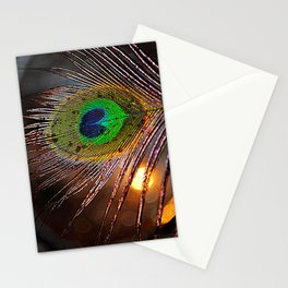 Pfau Licht Stationery Cards