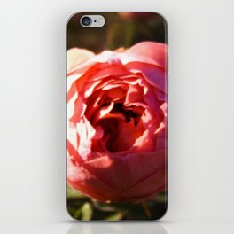 That which we call a Rose iPhone Skin