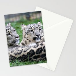 Aqua_Leopard_20180106_by_JAMColorsSpecial Stationery Cards