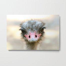 Whaddup? Ostrich Metal Print