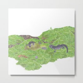 Journey of Tohoku salamanders | Miharu Shirahata Metal Print