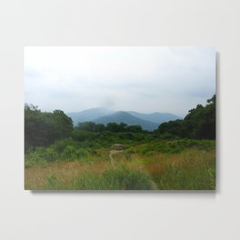 Shenandoah National Park 2 Metal Print