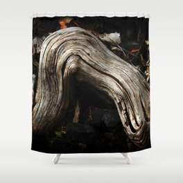 Decay and New Life Shower Curtain
