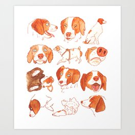 Faces and Poses of a Brittany Spaniel Art Print