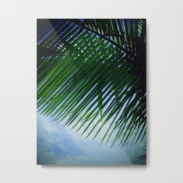 Sunlit Palm Leaves Metal Print