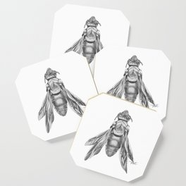 Orchid Bee Illustration Coaster
