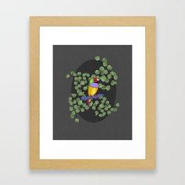 Colorful Finch Illustration Framed Art Print