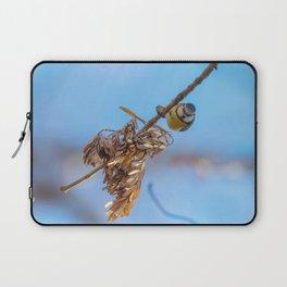 Blue tit on branch, Eurasian blue tit, (Cyanistes caeruleus) Cute little Bird Laptop Sleeve